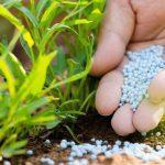 минирализация газона