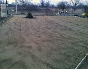 Сеяный газон
