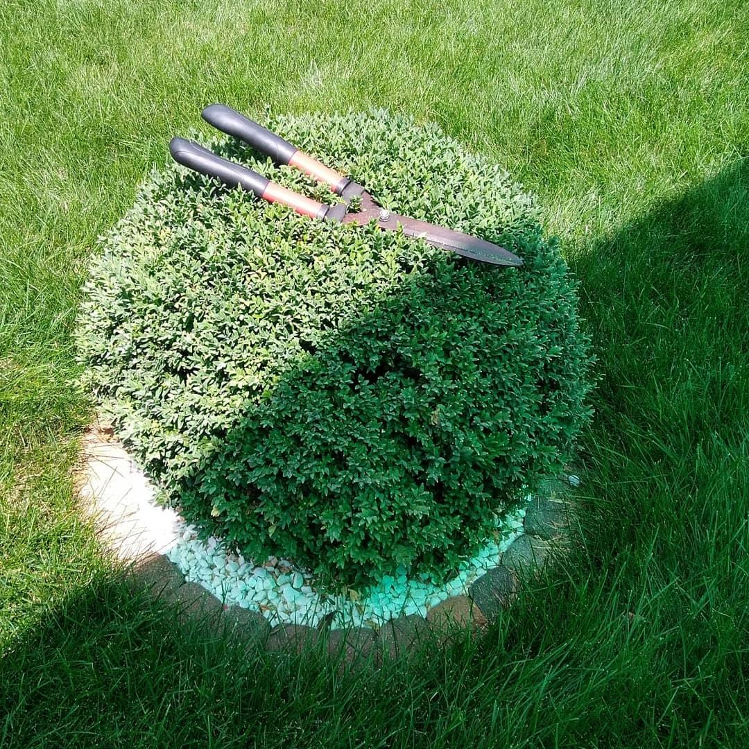 Работы по саду